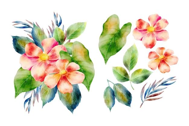 Fundo de arranjo de flores em aquarela