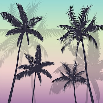 Fundo de árvores de palma