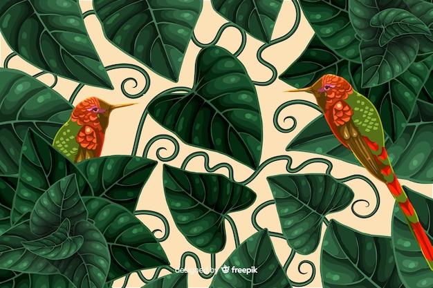 Fundo de beija-flores tropicais