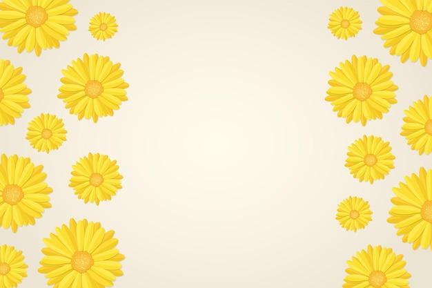 Fundo de botões de flores de calêndula