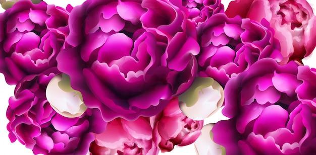 Fundo de cartão de flores de peônia