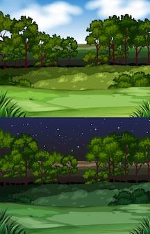 Fundo de cena de natureza com campo e árvores
