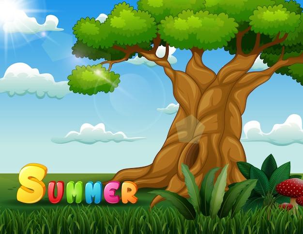 Fundo de conceito de verão com uma grande árvore na natureza