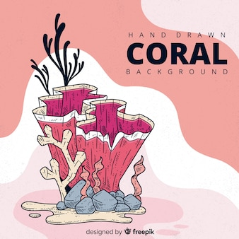 Fundo de coral desenhado de mão