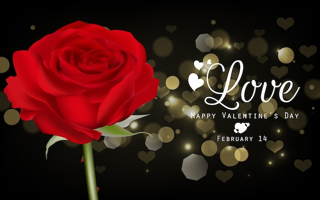 Fundo de dia dos namorados com rosa vermelha e ouro bokeh