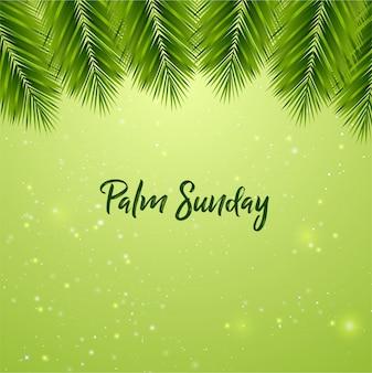 Fundo de domingo de ramos
