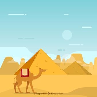 Fundo, de, egito, pirâmides, paisagem, com, caravana, de, camelos