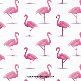 Fundo de flamingos de aquarela