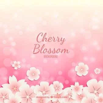 Fundo de flor de cerejeira com efeito bokeh