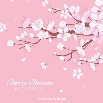 Fundo de flor de cerejeira desenhada de mão