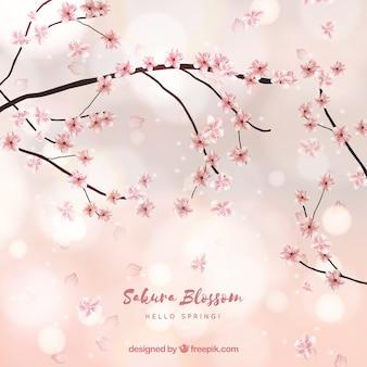 Fundo de flor de cerejeira em estilo borrado