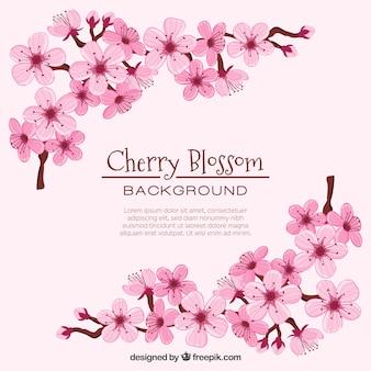 Fundo de flor de cerejeira em mão estilo desenhado