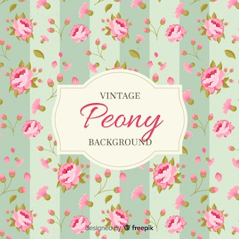 Fundo de flor de peônia vintage