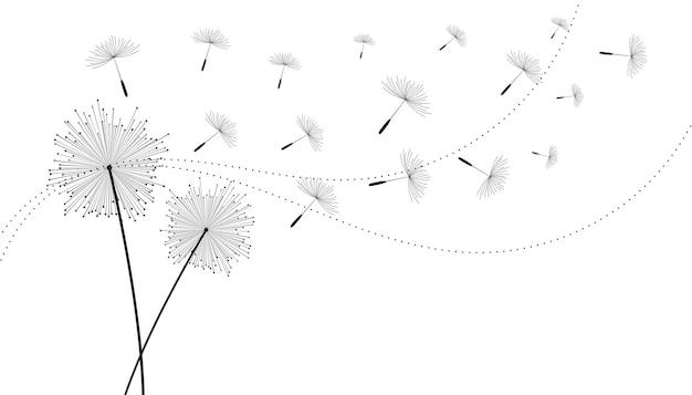 Fundo de flores com sementes de dente de leão voador