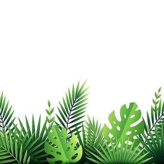 Fundo de flores de folhas tropicais de papel em branco com plantas exóticas e arbustos tropicais