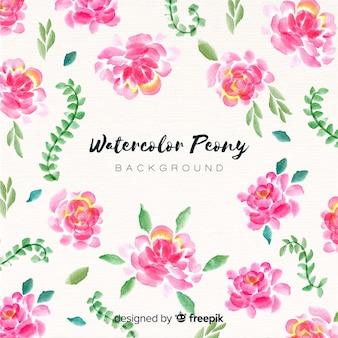 Fundo de flores elegante peônia aquarela