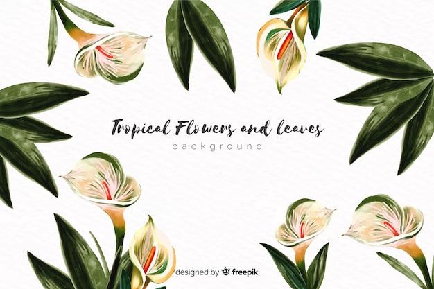 Fundo de flores exóticas de mão desenhada