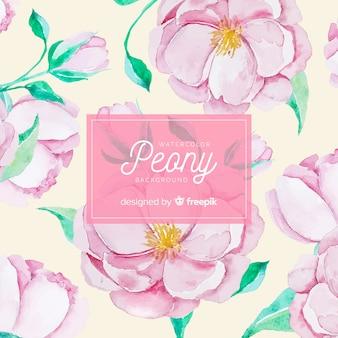 Fundo de flores peônia linda