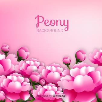 Fundo de flores peônia realista linda