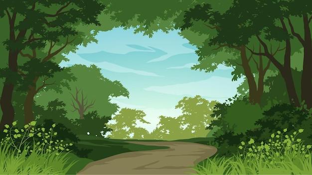 Fundo de floresta com trilha