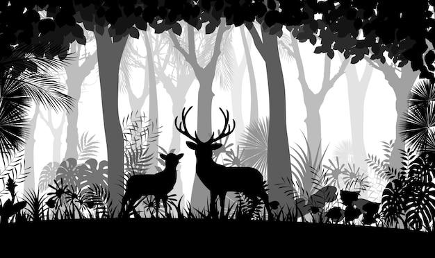 Fundo de floresta com veados selvagens de árvores