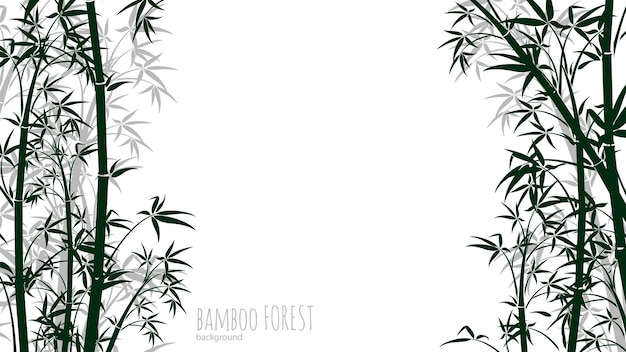 Fundo de floresta de bambu. floresta tropical chinesa e japonesa