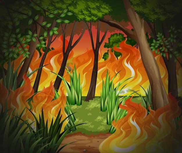 Fundo de floresta de fogo selvagem perigoso