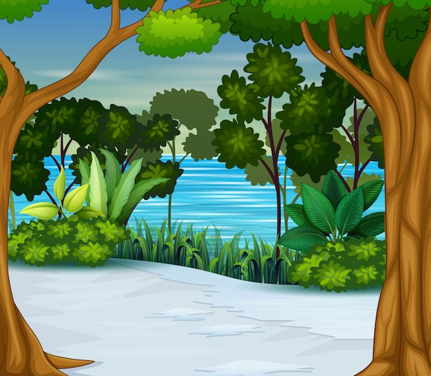 Fundo de floresta de temporada de neve e inverno