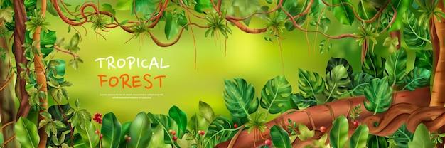 Fundo de floresta tropical Vetor grátis