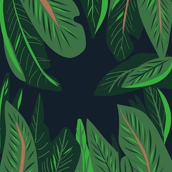 Fundo de folha tropical