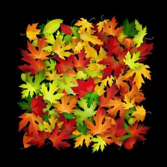 Fundo de folhas coloridas