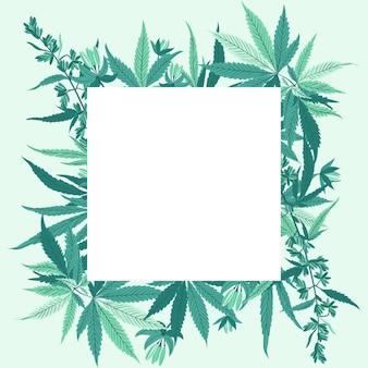 Fundo de folhas de cannabis botânicas