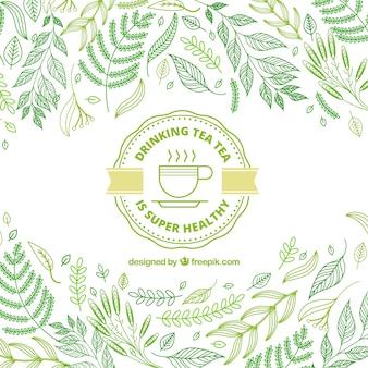 Fundo de folhas de chá com estilo desenhado de mão