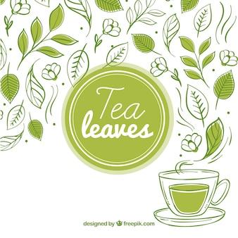 Fundo de folhas de chá com xícara de chá