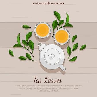 Fundo de folhas de chá de mão desenhada