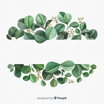Fundo de folhas de eucalipto mão desenhada