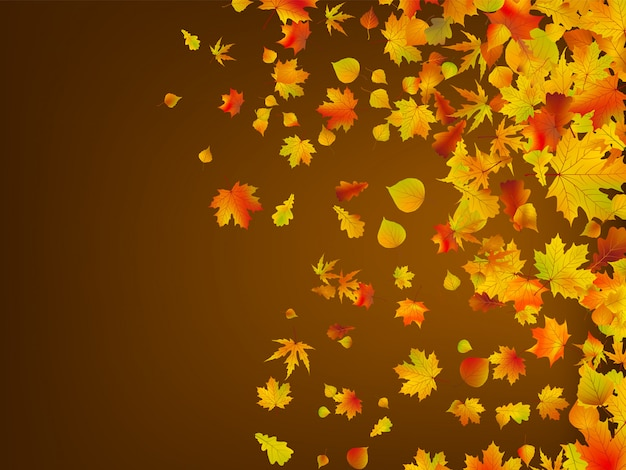 Fundo de folhas de outono caídas.