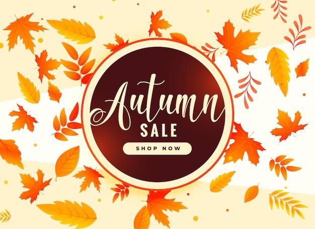 Fundo de folhas de outono com detalhes promocionais e venda