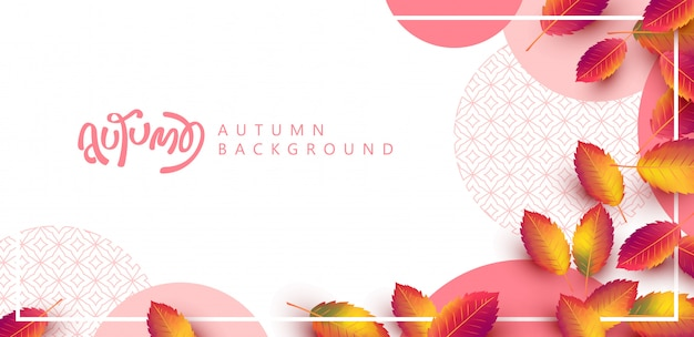 Fundo de folhas de outono. letras sazonais. bandeira de venda de promoção da temporada de outono.