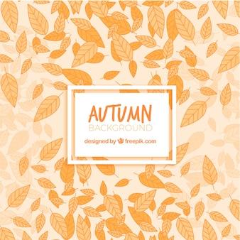 Fundo de folhas de outono secas desenhadas a mão