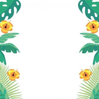 Fundo de folhas e flores tropicais