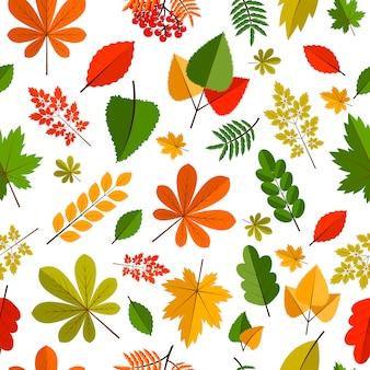 Fundo de folhas planas
