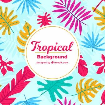 Fundo de folhas tropicais coloridas