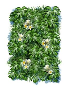 Fundo de folhas tropicais com flores de frangipani
