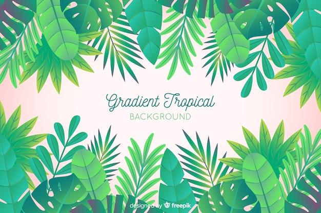 Fundo de folhas tropicais mão desenhada