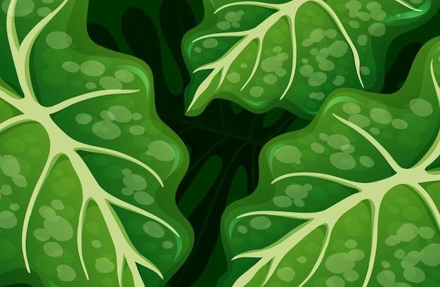 Fundo de folhas tropicais verdes