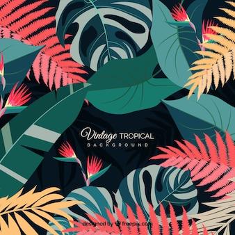 Fundo de folhas tropicais vintage