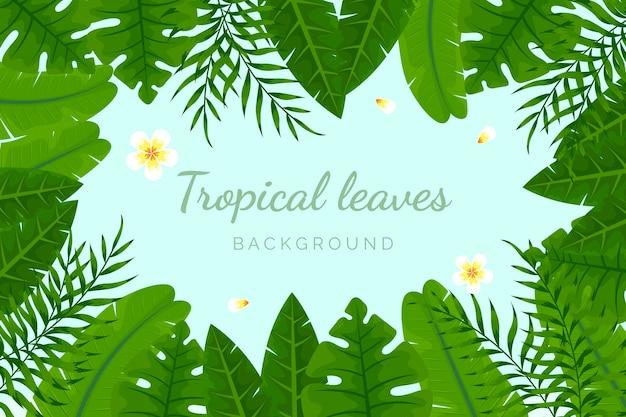 Fundo de folhas tropicais