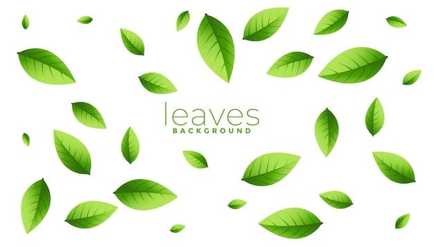 Fundo de folhas verdes caindo dispersas