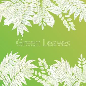 Fundo de folhas verdes